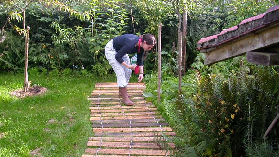 Chemin de jardin en bois